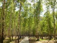 ЖК «Зеленая околица» - фото 3