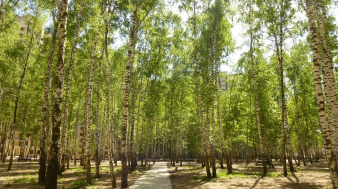 ЖК «Зеленая околица»