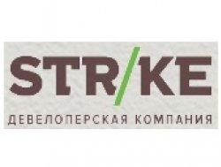 Логотип компании Strike